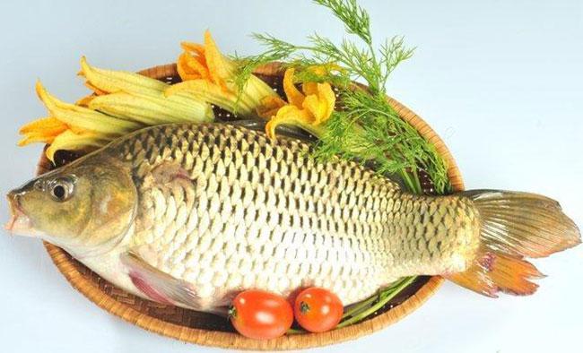 Các loại thực phẩm giúp tăng kích thước dương vật 4